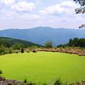Appalachian Vista by Joshua Bales