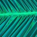 Aqua Angles by Florene Welebny