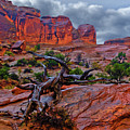 Arches National Park Rain by Kenneth Eis