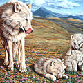 Arctic Summer by Richard De Wolfe