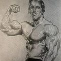 Arnold by Nick H