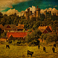 Arundel Castle With Cows by Chris Lord