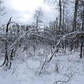 As Winter Returns by DeeLon Merritt