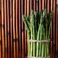Asparagus by Jessica Wakefield