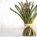 Asparagus Vintage by Jane Rix
