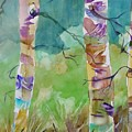 Aspen Trees by Patricia Bigelow