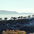 Atop Peavine Mountain by Edward Hass