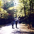 Autum Walking 2 Wcaedb2 by Lyle Crump