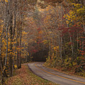 Autumn Drive by Andrew Soundarajan