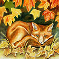 Autumn Fox by Antony Galbraith