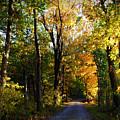 Autumn In Missouri by Cricket Hackmann