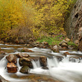 Autumn On The Provo River by Dennis Hammer