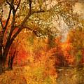 Autumn Pathways by Tara Turner