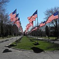 Avenue Of 444 Flags by Spencer McKain