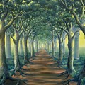 Avenue Of Enlightenment by Julianna Ziegler