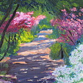 Azalea Path - Sayen Gardens by Lea Novak