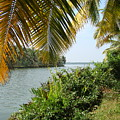 Backwaters Of Kerala-2 by Reshmi Shankar