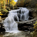 Bald River Falls In Autumn by Darrell Young
