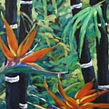 Bamboo And Birds Of Paradise by Richard T Pranke