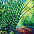 Bamboo Grove by Christopher Cox