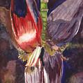 Banana Bloom by Matthew Doronila