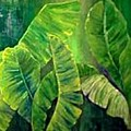 Banana Leaves by Carol P Kingsley