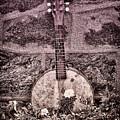Banjo Mandolin On Garden Wall by Bill Cannon