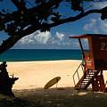 Banzai Beach by Mark Gilman