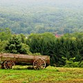 Baraboo Hillside by Marilyn Smith