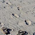 Barefootin by Debbie Mathews