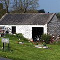 Barn At Fuerty Church Roscommon Ireland by Teresa Mucha