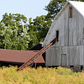 Barn Lot by Alan Look