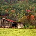 Barn North Carolina 1994 by Michelle Wiarda