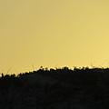 Basic Sunset by Camera Candy