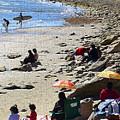 Beach Babies 2 by Robin Hernandez