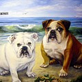 Beach Bullies by Anne Kushnick