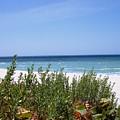 Beach Scene 6 by Anna Villarreal Garbis