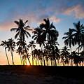 Beach Sunset by Mike Reid