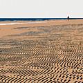 Beach Walk by David Lee Thompson