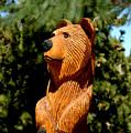 Bear In Woods by LeeAnn McLaneGoetz McLaneGoetzStudioLLCcom