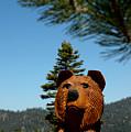 Bear by LeeAnn McLaneGoetz McLaneGoetzStudioLLCcom