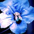 Bee On Blue Flower by Ramona Barnhill