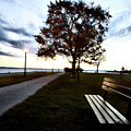 Bench And Street Light by Mark Duffy