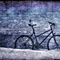 Bicycle by Evelina Kremsdorf