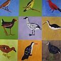 Big Island Endangered Birds by Patrice Tullai