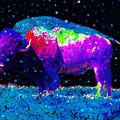 Big Snow Buffalo by David Lee Thompson