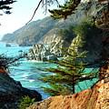 Big Sur Vista by Charlene Mitchell