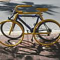 Bike And Rack by Allan E Dooley Jr