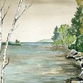 Birches By The Lake by Brenda Owen