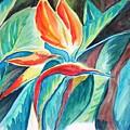 Bird Of Paradise by Gladiola Sotomayor